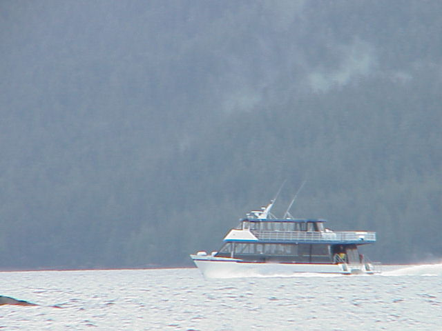 High speed catamaran going up Behm Canal in Misty Fiords